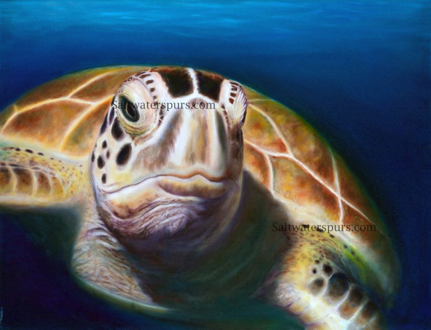 """Making """"Elmer"""" (Or How I Paint a Sea Turtle)"""