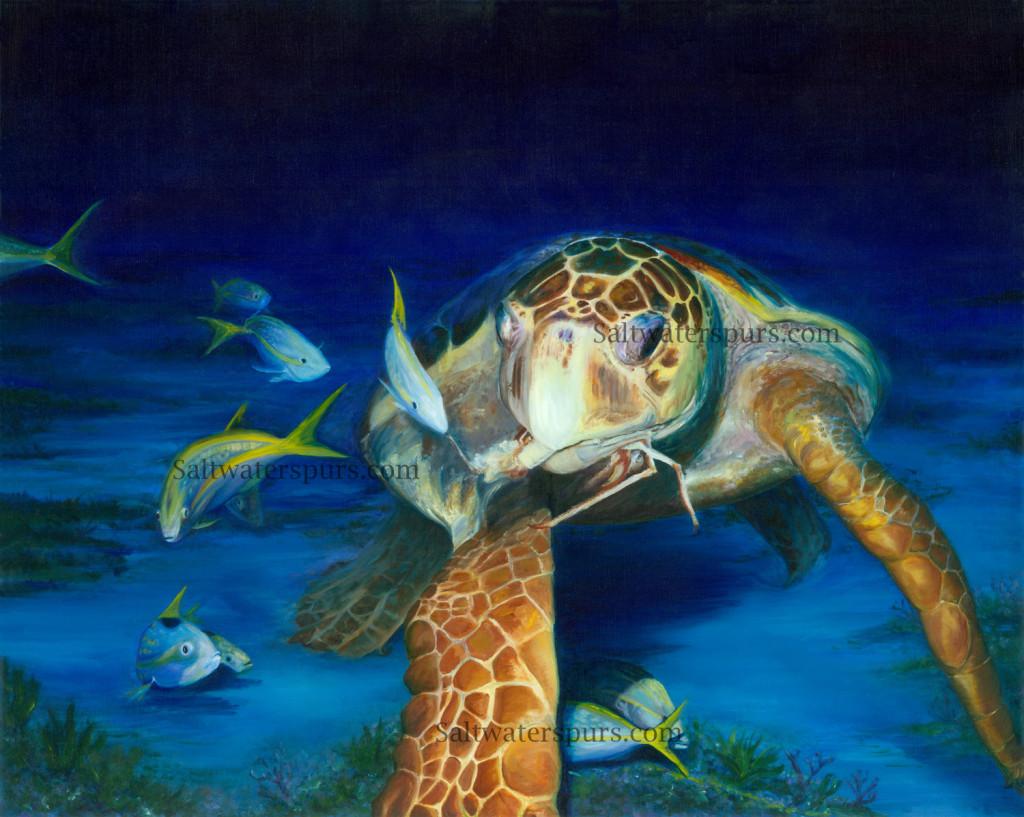 Sea Turtle Art – Turtle Lady Art