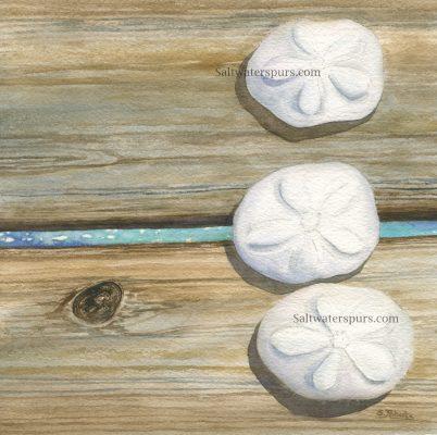 """Sea Biscuits"" </br> Original Watercolor    8"" x 8"""