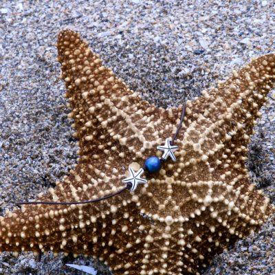 "The ""Sara"" Starfish Necklace"