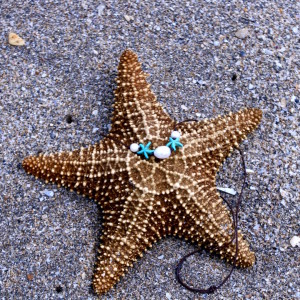 "The ""Suzy"" Starfish Necklace"