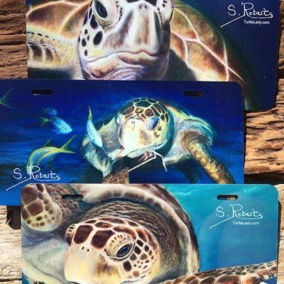 Sea Turtle License Plate
