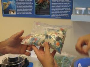 Resized Bag of Plastic Image IMG_2002 [445451]