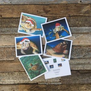 Seas and Greetings Christmas Cards Pack
