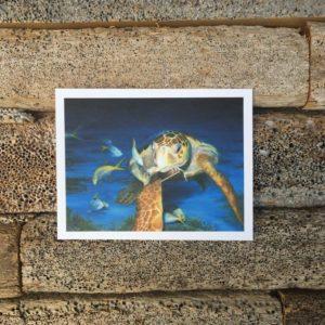 Sea Turtle Note Cards-Variety Pack II