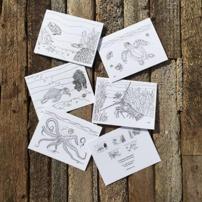 Coloring Note Cards
